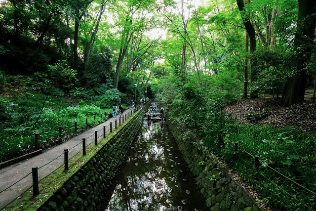 東京なのに気軽に出会える大自然「等々力渓谷」で、ココロとカラダをリフレッシュしてきた